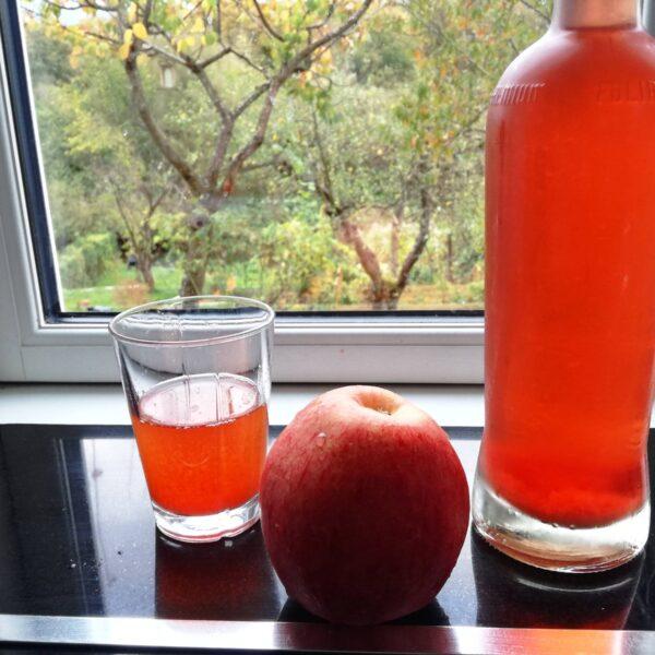 Æblesaft og jonagold æble
