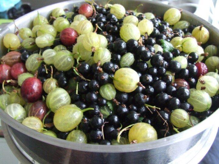 Bær til blandet saft