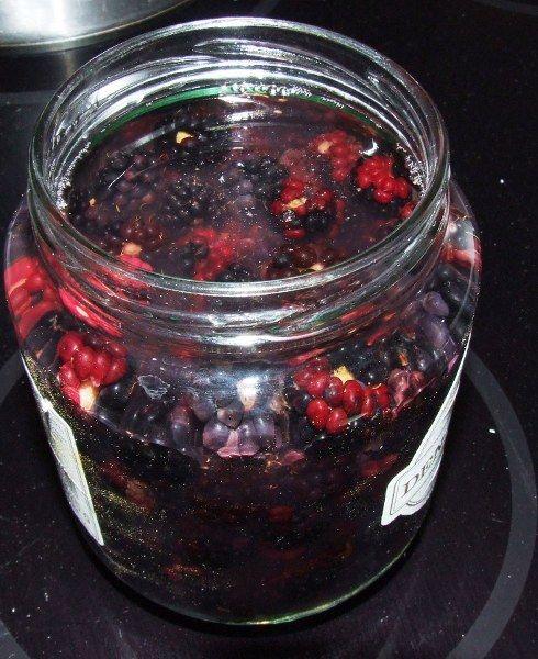 Brombær trækker i glas til brombær snaps