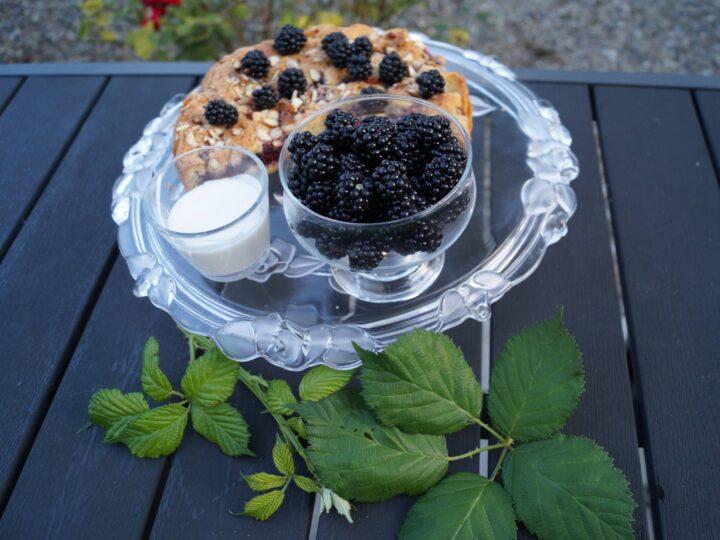 Brombærkage med vaniljecremefraiche og friske brombær