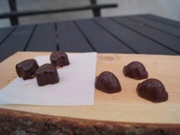 Chokolade skildpadder med romcreme