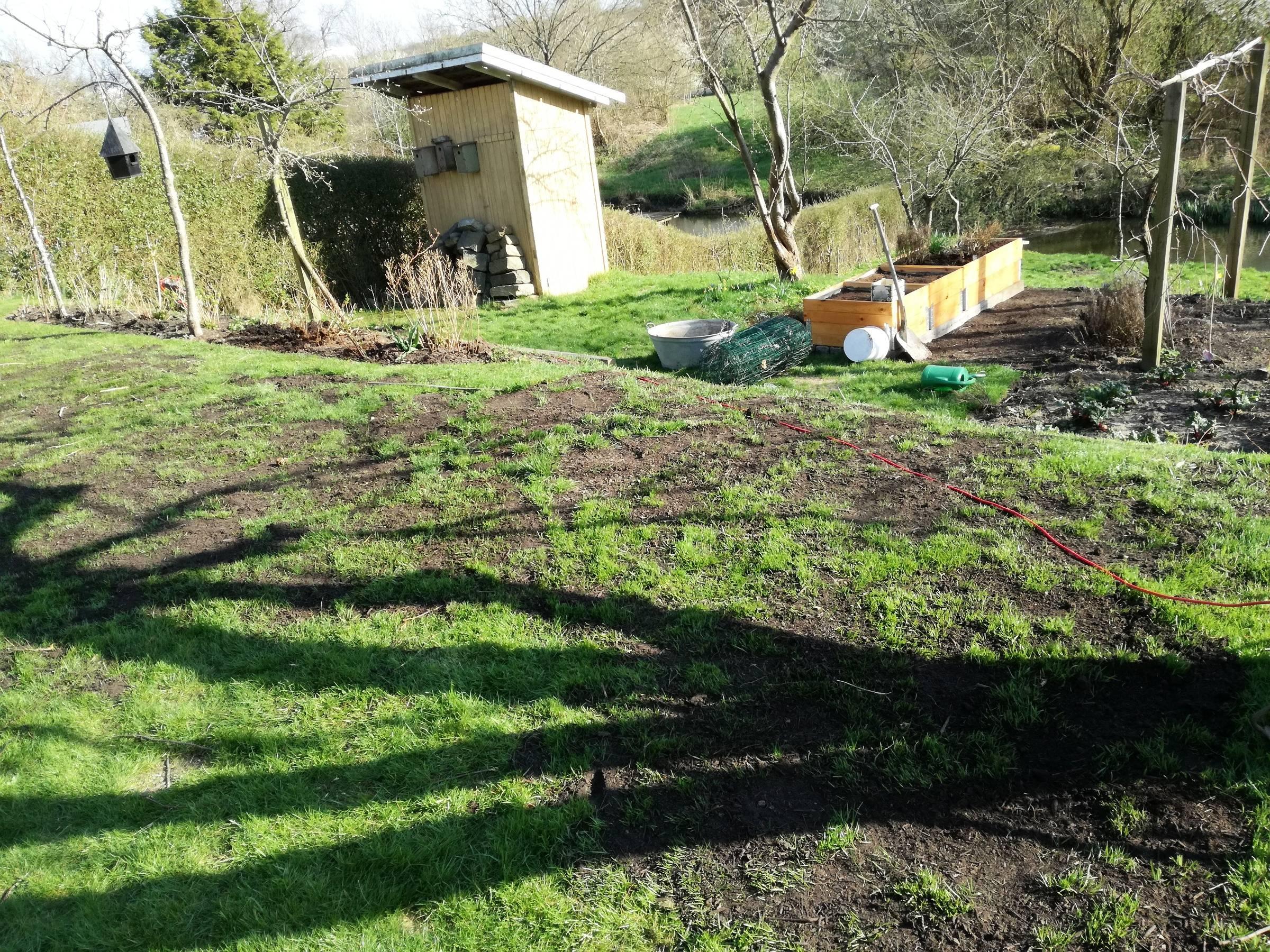 Græsplæne med topdressing