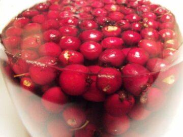 Hvidtjørnebær kryddersnaps
