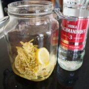Hyldeblomst fra hyldeblomstsaft med en flaske vodka