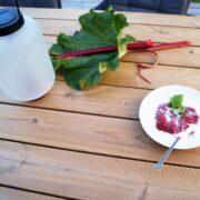 Rabarbergrød med fløde serveret udenfor på terrassen
